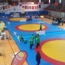 Lucha Olímpica 4